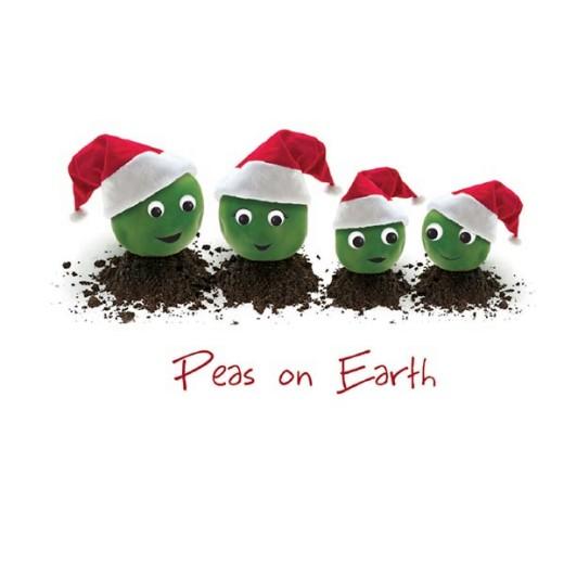 Peas on Earth